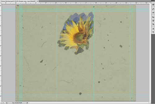 Image of brochure in progress, showing sunflower photo partially visible through mask painting.