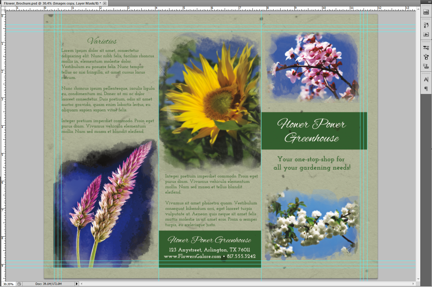 Image of finalized brochure with images and text.