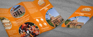 Large Brochure Design