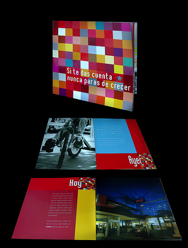 Inspiring Brochure and Catalog Examples