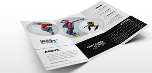 Image of an open trifold brochure.
